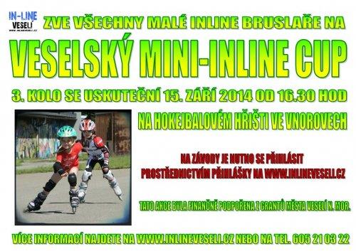 Veselský mini-inline cup 2014 - 3.kolo